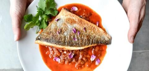 Las mejores recetas de pescado para cocinar al horno